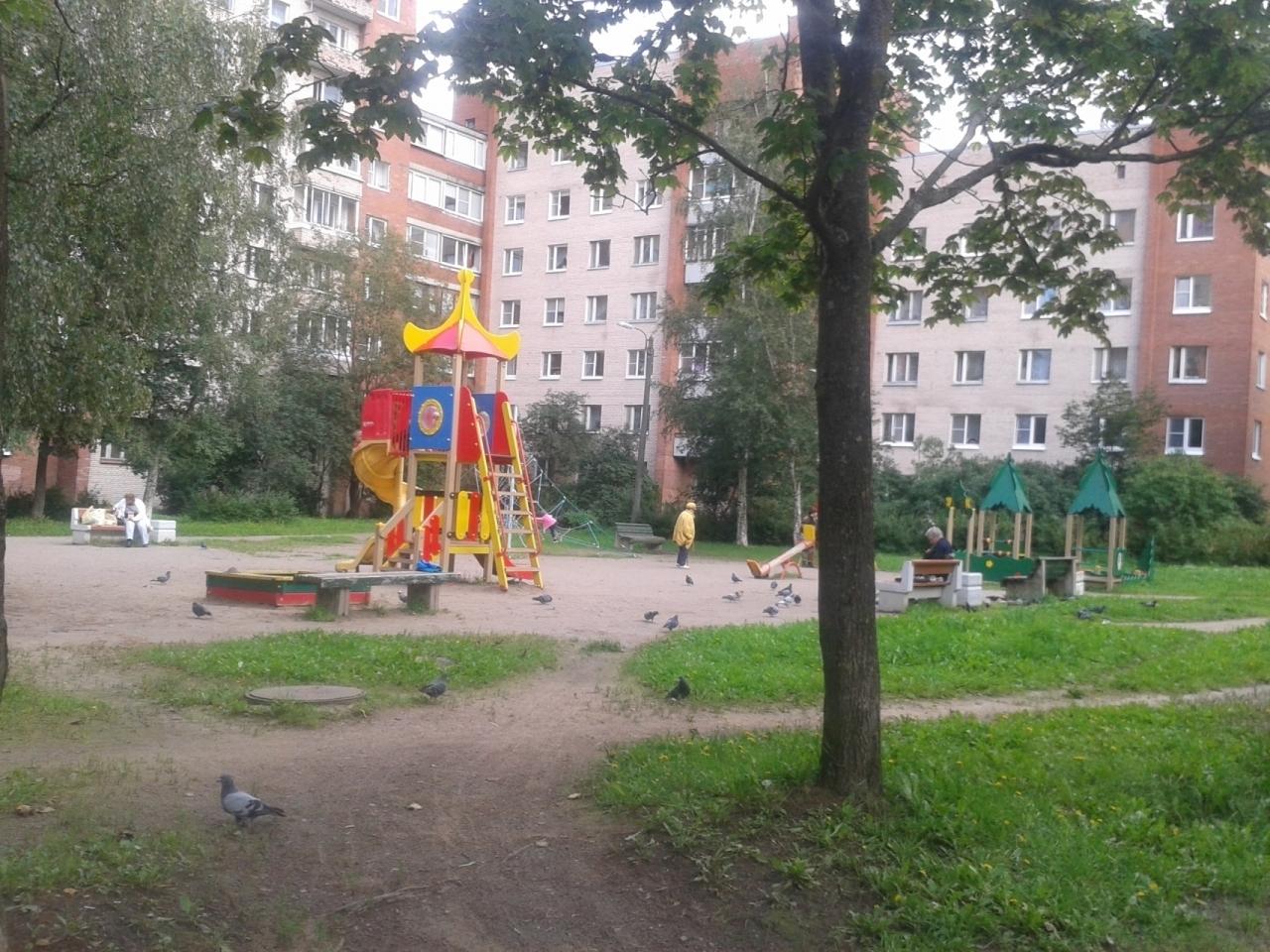http://arendaspb24.pro.bkn.ru/images/s_big/9c5bfb0f-49fc-11e7-b2d5-448a5bd44c07.jpg